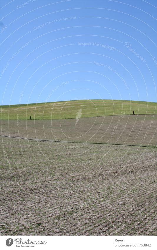 Feld Zaun Physik braun grün Hügel Einsamkeit Sommer Himmel trist Wärme blau
