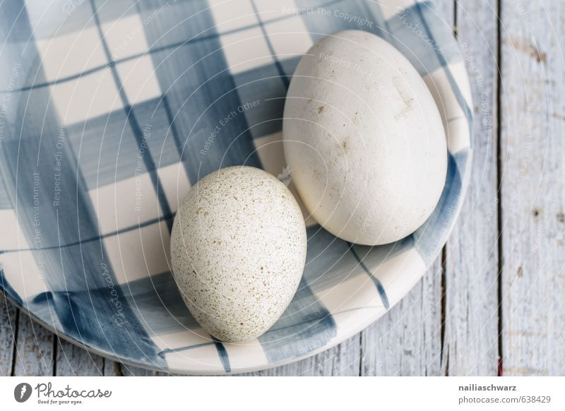 Goose and Duck Egg blau schön weiß Leben grau Holz Gesundheit Essen natürlich Feste & Feiern Linie Stimmung liegen Lebensmittel elegant Glas