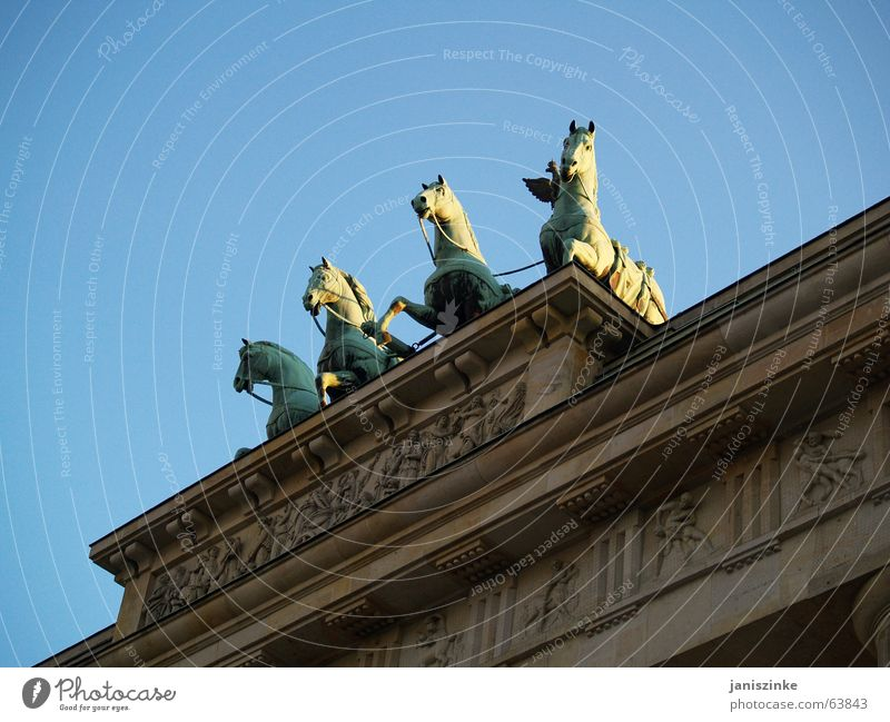 quattro Himmel blau Berlin Stein Gebäude Pferd Tor Denkmal Grenze Wahrzeichen Hauptstadt Osten Ornament Weste Brandenburger Tor Ossis