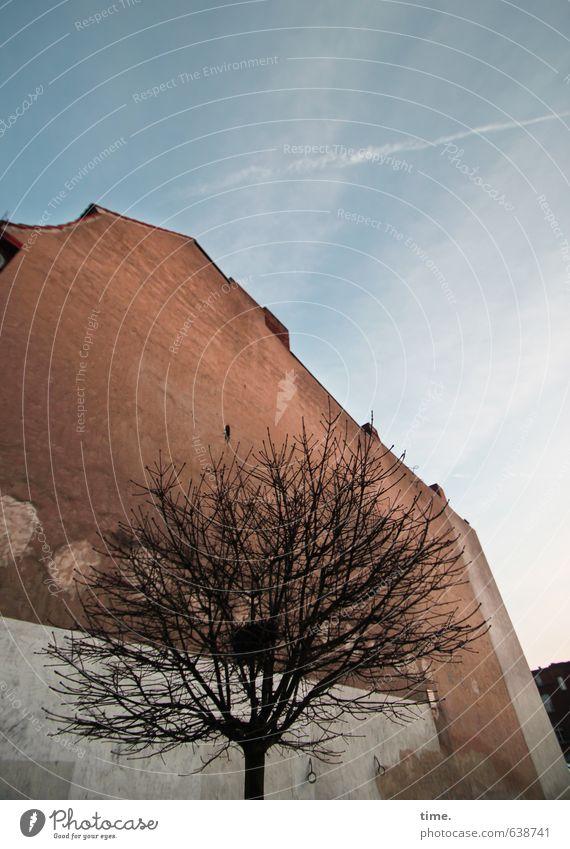 naturbelassen Himmel Wolken Schönes Wetter Baum Haus Bauwerk Gebäude Mauer Wand Fassade alt hoch kaputt Gefühle geheimnisvoll Nostalgie Ferne Stadt Verfall