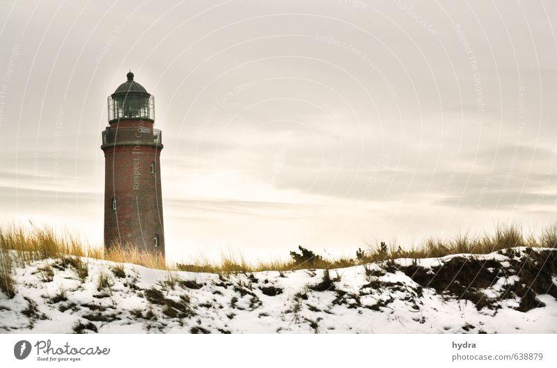 Leuchtturm Darßer Ort Erholung Ferien & Urlaub & Reisen Landschaft Himmel Winter Schönes Wetter Schnee Gras Dünengras Küste Strand Ostsee Meer Sandstrand