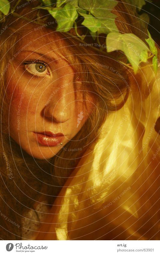 ophtalmic Auge träumen Mund gold Wasserfall mystisch Märchen verträumt Efeu