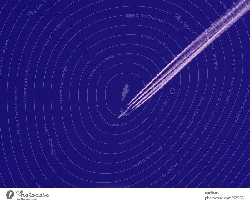 ab in den Süden Himmel blau Sommer Ferien & Urlaub & Reisen Flugzeug verrückt Luftverkehr Freizeit & Hobby diagonal Schönes Wetter Mallorca Triebwerke Buche Kondensstreifen Passagierflugzeug