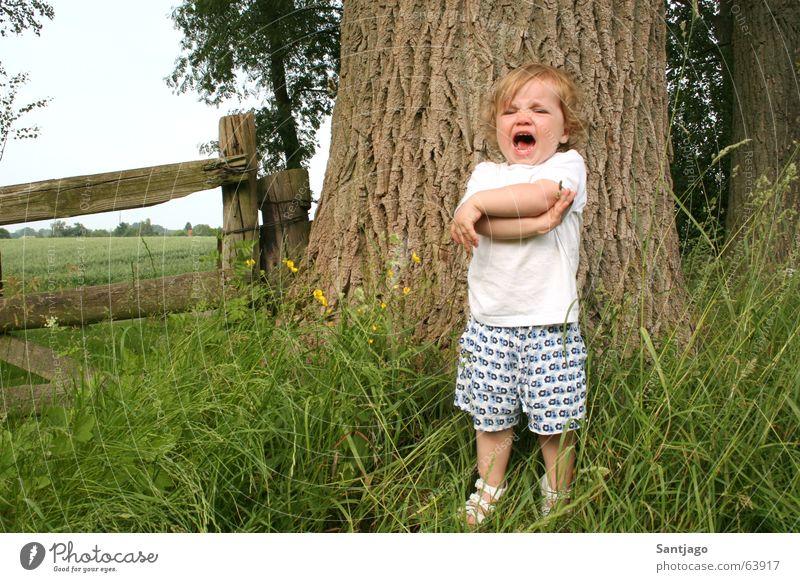 hier will ich nicht stehen..... Kind Mädchen Baum Sommer Zaun weinen