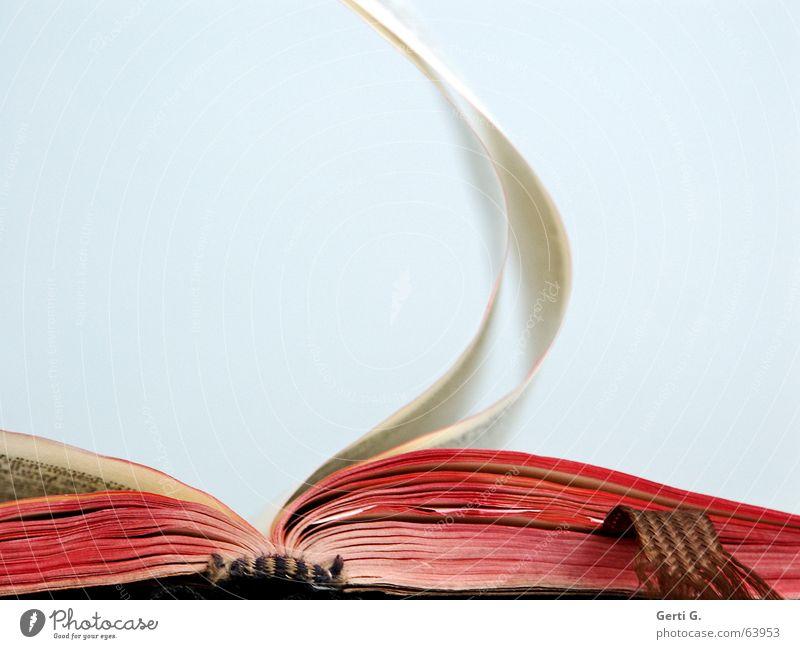 blow job Textfreiraum oben lesen Bildung Buch Wind Zettel Schriftzeichen Kommunizieren hell rot Verlag Buchstaben Typographie Bibel Neues Testament