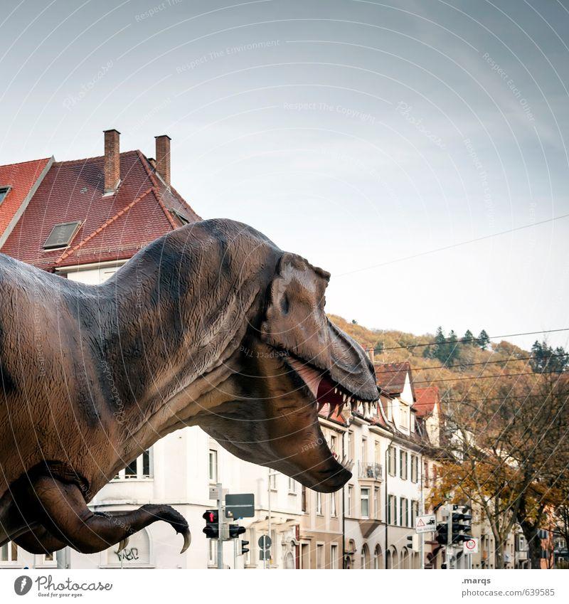 Ausnahmezustand Himmel Schönes Wetter Stadt Haus Dinosaurier 1 Tier beobachten Aggression außergewöhnlich bedrohlich exotisch Entsetzen Todesangst gefährlich