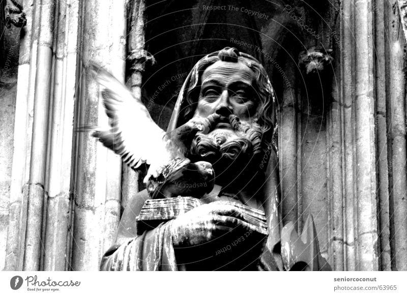 Heiliger Akt Stein Religion & Glaube Buch Flügel Feder lesen Bart Statue heilig gefangen Taube Dom Köln Katholizismus Kölner Dom