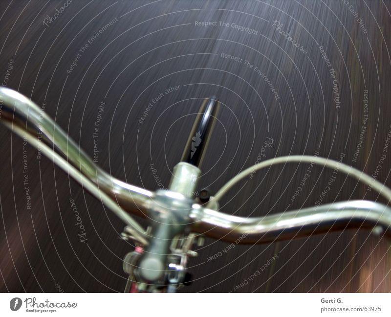 Babe Hund Metall Fahrrad nass Geschwindigkeit Kabel fahren Rasen Dinge Asphalt Autobahn Röhren Fahrradfahren unterwegs Straßenverkehr