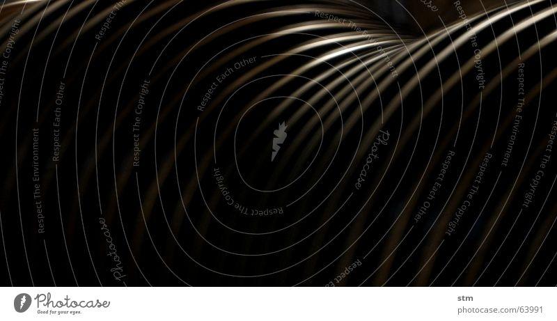 roma capoccia 8 weiß schwarz Linie rund Grafik u. Illustration tief Furche schwingen geschwungen