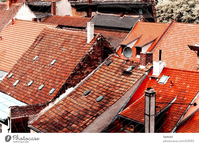 über den Dächern alt rot Wohnung neu Dach Häusliches Leben Backstein Verfall Schornstein durcheinander einfarbig