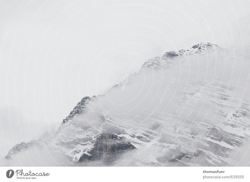 (S)no(w) go Area Himmel Natur Landschaft Winter kalt Berge u. Gebirge Schnee Felsen Horizont Eis Nebel wandern ästhetisch Ausflug bedrohlich Abenteuer