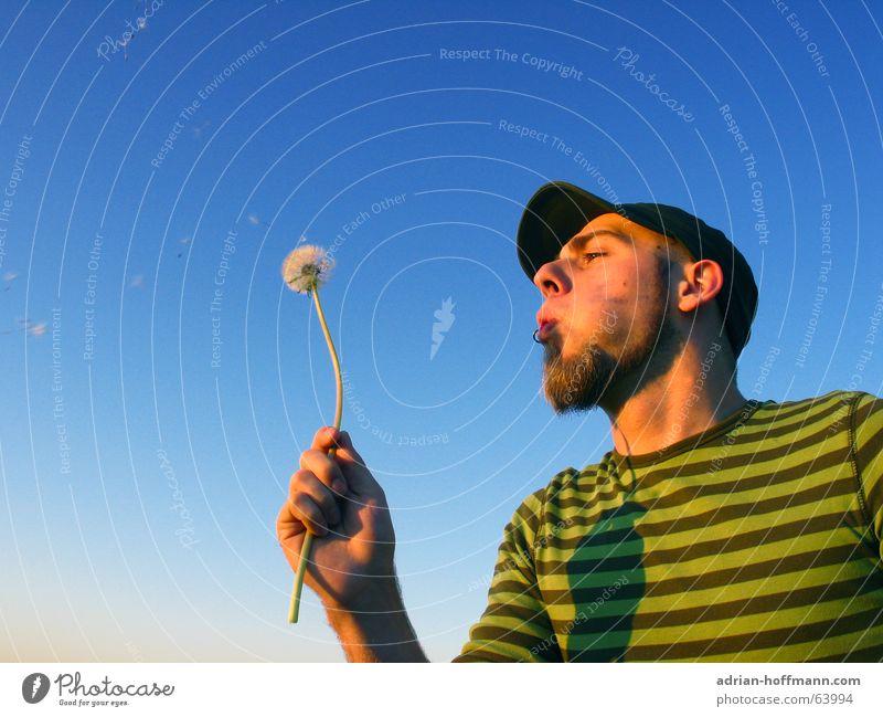 Pusteblume Mann Kerl blasen Blume Löwenzahn Baseballmütze Mütze Bart Piercing Streifen grün Sommer Freizeit & Hobby Erholung Typ löwenzuahn schirmchen fliegen
