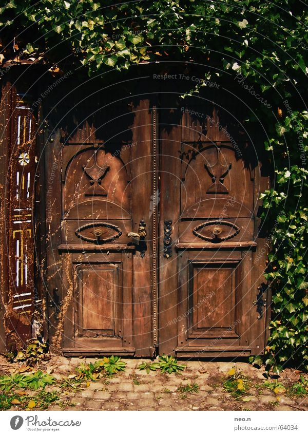Geheime Tür alt grün Pflanze Haus dunkel Architektur Holz braun Tür Zeichen geheimnisvoll historisch Burg oder Schloss Ruine Schlüssel mystisch