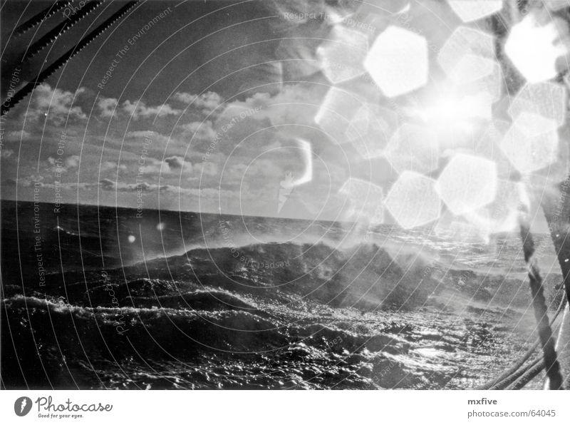 DänemarkSee Wasser Sonne Meer kalt Wasserfahrzeug Wellen Wind nass Sehnsucht Segeln Fernweh Seemann Segelschiff Wellengang Windjammer