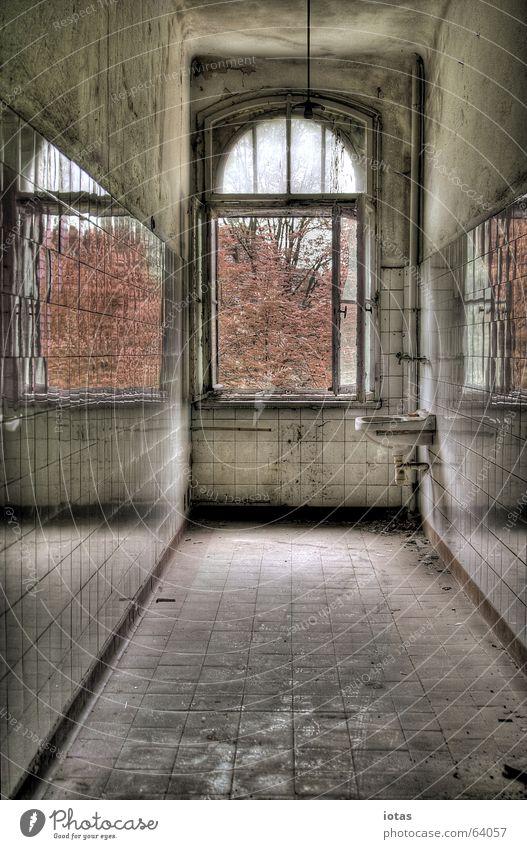 abandoned barracks alt schön Baum Farbe Einsamkeit ruhig Fenster Herbst Gebäude Stil Traurigkeit Deutschland offen dreckig Vergänglichkeit Ende