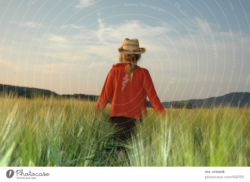 Cowgirl Getreide Frau Erwachsene Feld Hut Zukunft Landwirt Ernte Aussicht Erscheinung sentimental Farbfoto Kornfeld Rückansicht Erntehelfer Hintergrund neutral