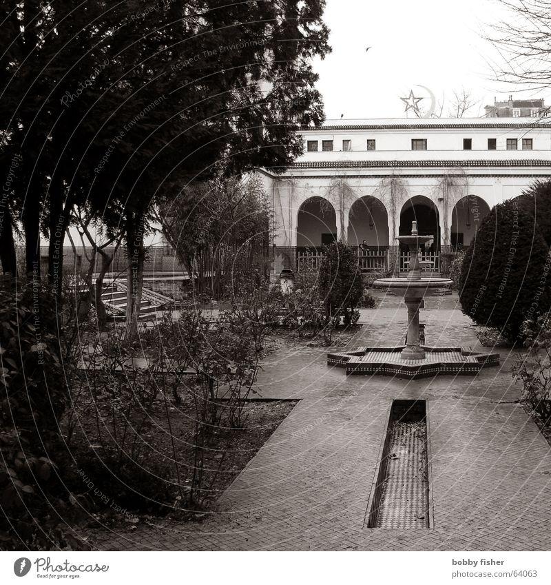 paris religion 4 Paris Frankreich Moschee Brunnen Religion & Glaube Garten Schwarzweißfoto