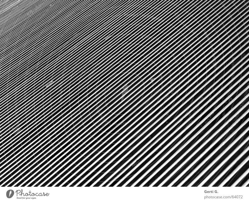 monochrome Linien diagonal graphisch Streifen abstrakt Elektrisches Gerät Technik & Technologie Industrie Schwarzweißfoto Strukturen & Formen optik