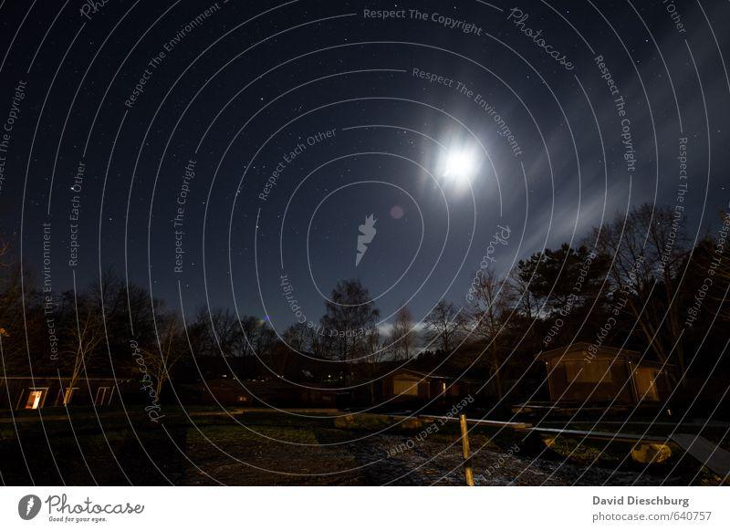 Sternenklare Nacht Ferien & Urlaub & Reisen Landschaft Himmel Wolken Nachthimmel Frühling Herbst Schönes Wetter Baum Wald blau braun gelb schwarz weiß Mond