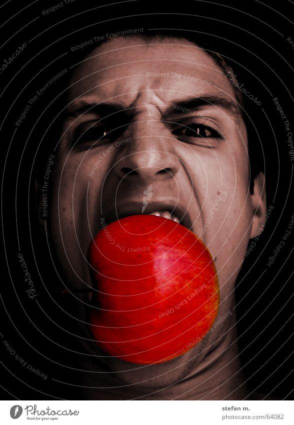 apfel Gesicht Ernährung Essen Apfel Wildtier Appetit & Hunger tierisch böse Frucht