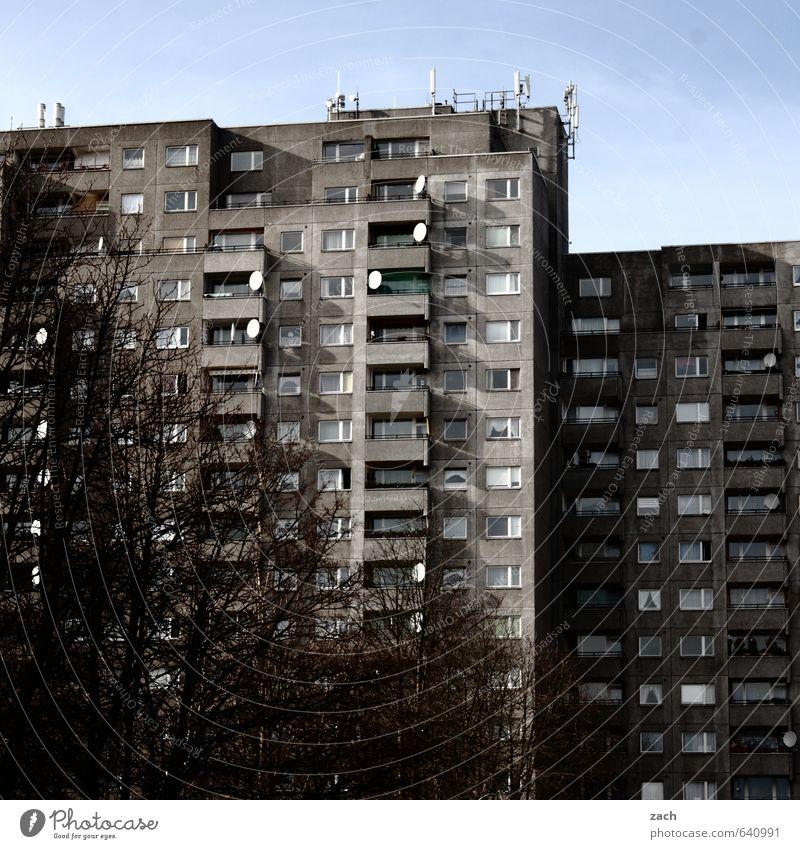 Nachbarschaft Häusliches Leben Wohnung Himmel Winter Baum Berlin Stadt Hauptstadt bevölkert überbevölkert Haus Hochhaus Gebäude Architektur Plattenbau Fassade