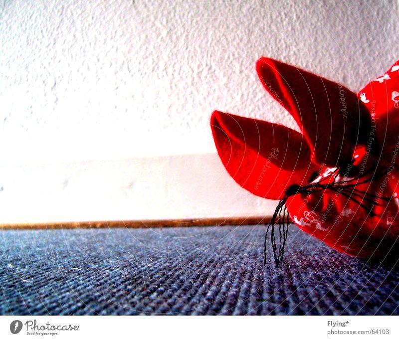 pssssst... weiß blau rot Wand Bodenbelag Ohr Maus Borte Ausruf hm