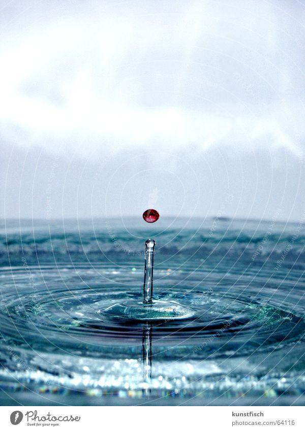 Und es gibt sie noch... Wasser blau rot Wellen Wassertropfen fallen tauchen spritzen Reaktionen u. Effekte Makroaufnahme ausbreiten auftauchen Sirup