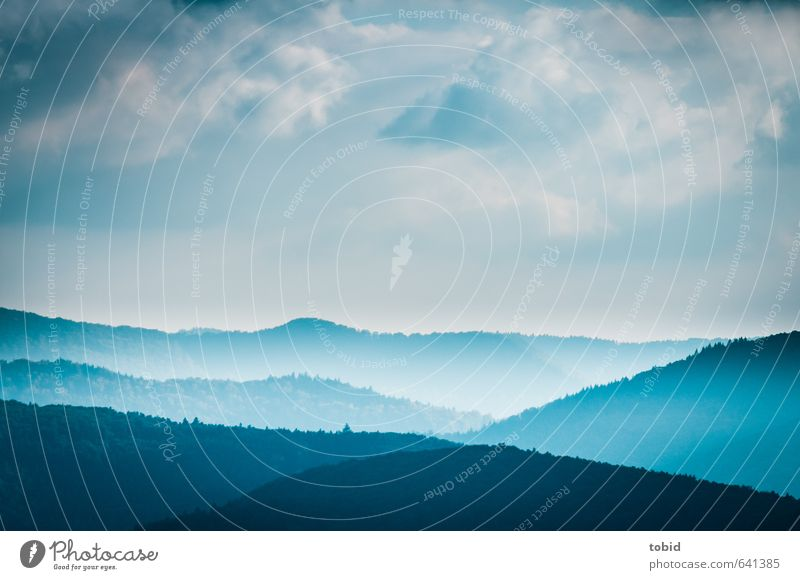 Dahner Hügel Himmel Natur blau Pflanze Baum Landschaft Wolken Ferne schwarz Wald Berge u. Gebirge Herbst Freiheit natürlich Horizont Luft