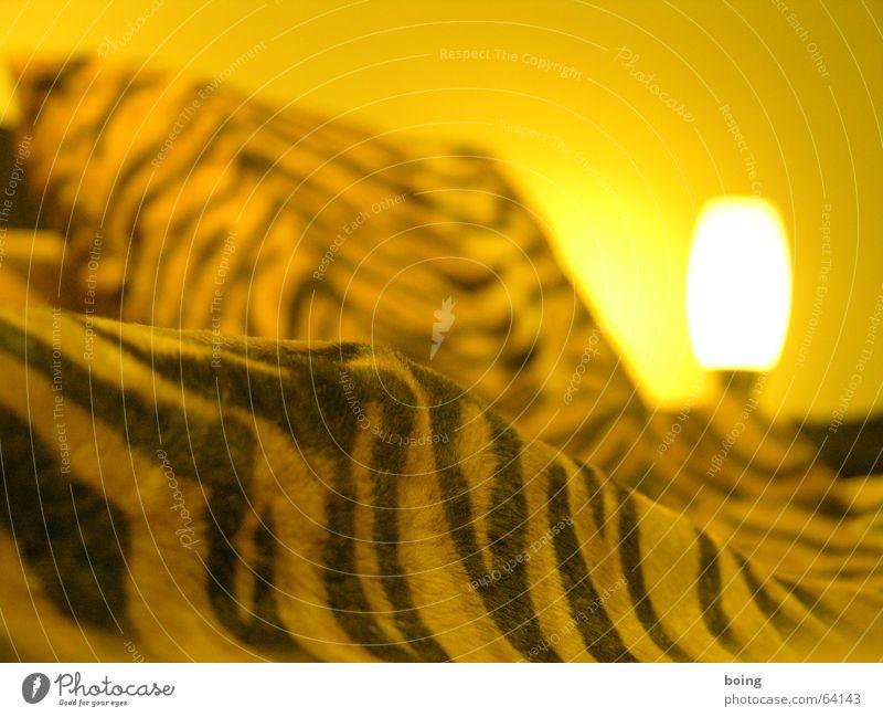 Zu Gast bei Freuden Bett Möbel Decke gestreift Kissen Schlafzimmer Bettdecke Tigerfellmuster