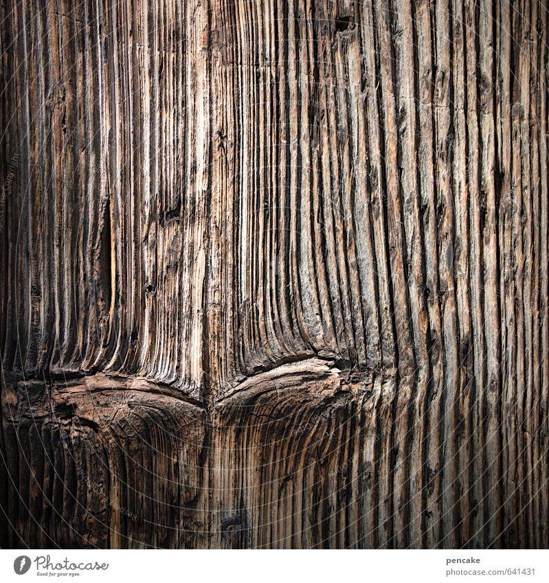 misstrauisch Natur Gesicht Auge Senior Holz Zeichen Falte Holzbrett Nostalgie Aggression Gedanke rustikal Misstrauen zusammengekniffen urig Astloch