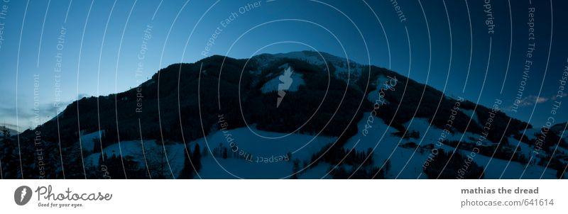 DER BERG VI Umwelt Natur Landschaft Himmel Horizont Winter Schönes Wetter Schnee Baum Wald Alpen Berge u. Gebirge Gipfel Schneebedeckte Gipfel ästhetisch
