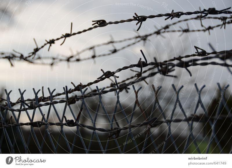 Freiheit ist ein kostbares Gut.... Himmel dunkel kalt Umwelt Wand Gefühle Tod Mauer grau Metall gefährlich bedrohlich beobachten Schutz Unendlichkeit