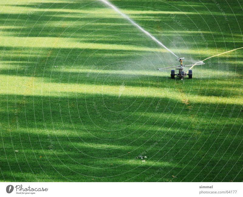 Rasensprenger Wasser grün Rasen Strahlung Fußballplatz Wasserstrahl Bewässerung Rasensprenger