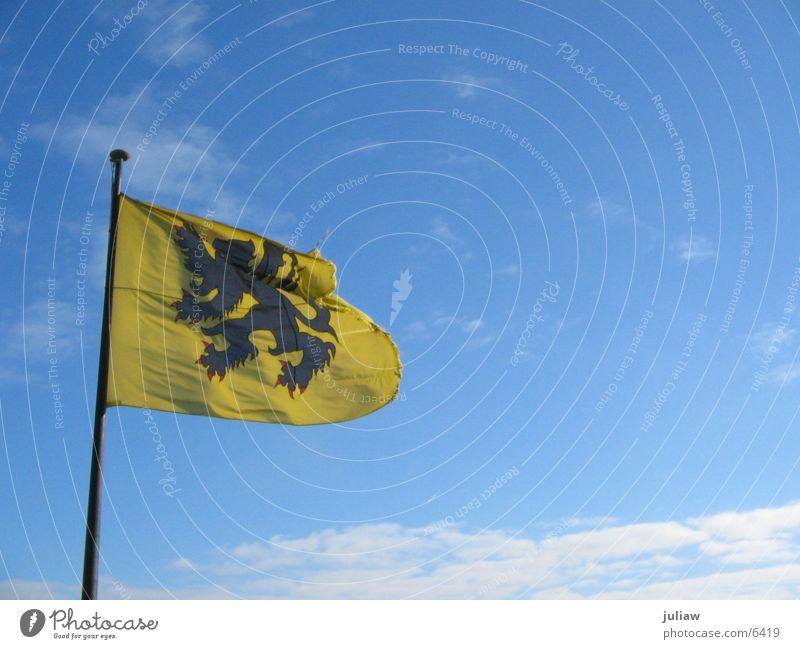 Der flämische Löwe Himmel Wolken Wind Fahne Dinge Löwe Belgien Wappen Gent Flandern