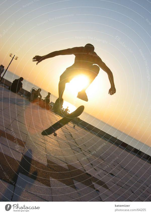 skate or die Mann Sonne Sport Aktion Skateboarding Dynamik