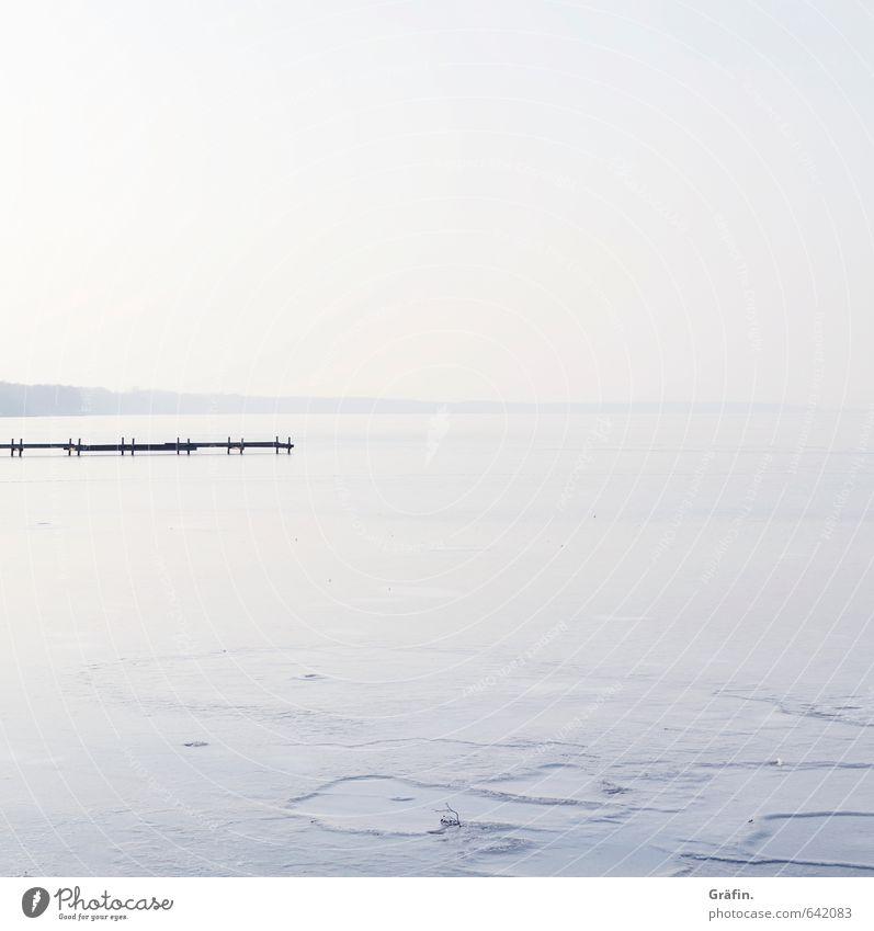 Das Bißchen Winter Umwelt Landschaft Wasser Wolkenloser Himmel Horizont Schönes Wetter Eis Frost Seeufer Steinhuder Meer Menschenleer frieren Unendlichkeit blau