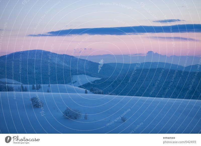 Schwarzwälder Winterabend Himmel Natur Ferien & Urlaub & Reisen blau Baum Landschaft Wolken Winter Ferne kalt Wald Berge u. Gebirge Schnee Freiheit Eis Wetter