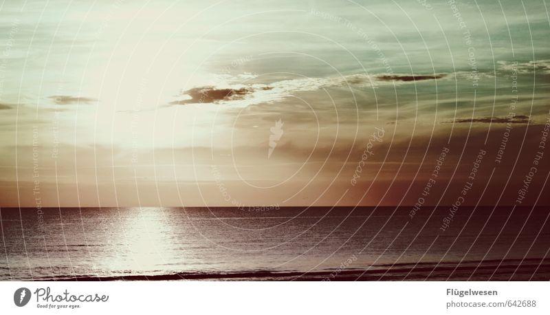 Sommer unsres Lebens Ferien & Urlaub & Reisen Himmel (Jenseits) Wasser Sonne Meer Wolken Strand Küste Wellen genießen Lebensfreude Seeufer Ostsee Bucht