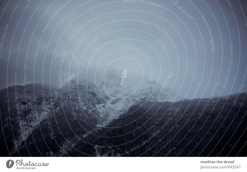 DER BERG III Umwelt Landschaft Pflanze Himmel Wolken Horizont Winter Wetter schlechtes Wetter Nebel Schnee Blume Urwald Alpen Berge u. Gebirge Aggression