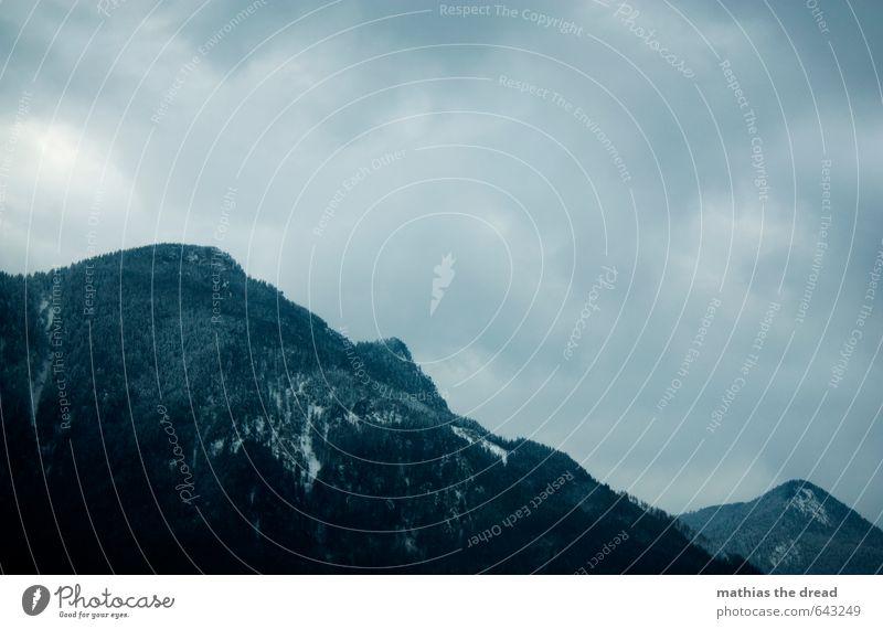 DER BERG II Umwelt Natur Landschaft Pflanze Wolken Horizont Winter schlechtes Wetter Nebel Eis Frost Schnee Baum Wald Alpen Berge u. Gebirge Gipfel
