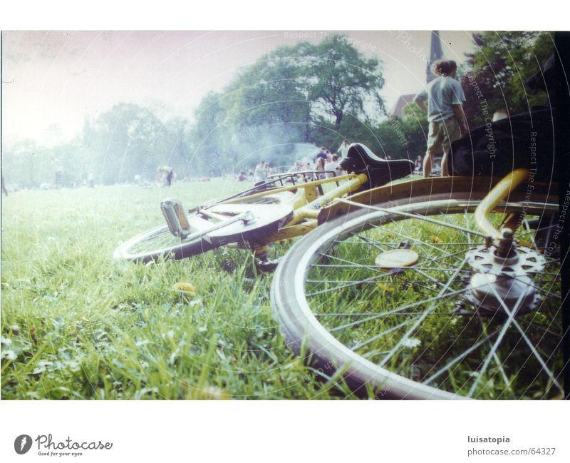 nebelschwaden-fahrrad grün ruhig Wiese Freiheit Traurigkeit Park Zufriedenheit Fahrrad Nebel Leipzig Sachsen