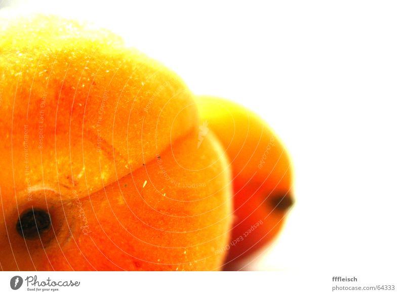 A(rsch)prikose Aprikose gelb Unschärfe Vordergrund Hintergrundbild orange Frucht Makroaufnahme Hinterteil