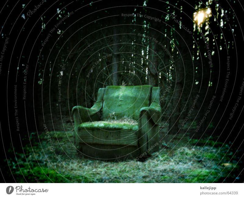 ruhiges plätzchen... Sessel Polster Wald grün dunkel Einsamkeit Waldlichtung Brandenburg Blatt Tanne Licht Matrix gruselig Märchen mystisch Stuhl sitzen Natur