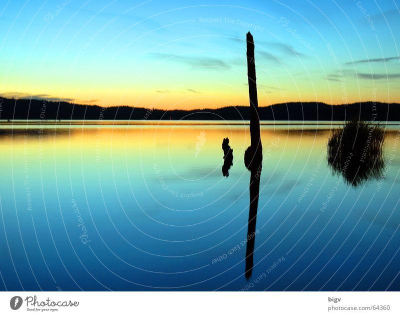 Abendstimmung Himmel blau Wasser schön Sonne Landschaft ruhig See Hintergrundbild träumen orange Frieden Ende Stengel Paradies Stock