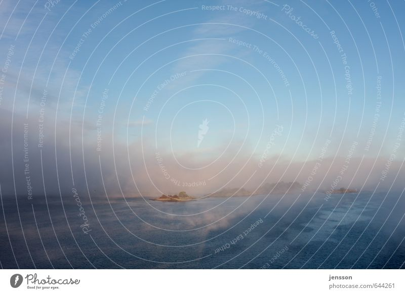 Morgennebel über dem Drammenfjord Ferien & Urlaub & Reisen Ausflug Kreuzfahrt Natur Landschaft Urelemente Luft Wasser Himmel Sonnenaufgang Sonnenuntergang