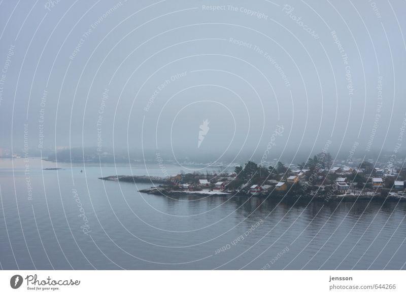 Fjordidylle Ferien & Urlaub & Reisen Pflanze Meer Einsamkeit Landschaft ruhig Haus Winter kalt Umwelt Traurigkeit Küste Stimmung Nebel Häusliches Leben Dorf