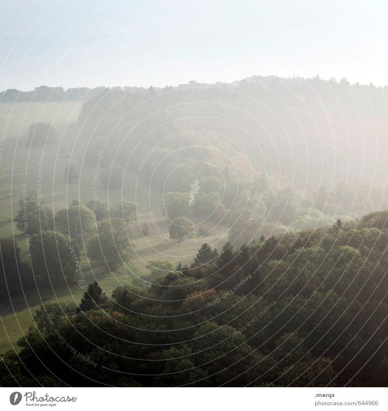 Dunst Natur schön Sommer Baum Landschaft Wald Umwelt Wiese natürlich Stimmung Nebel frisch Klima Ausflug Schönes Wetter einfach
