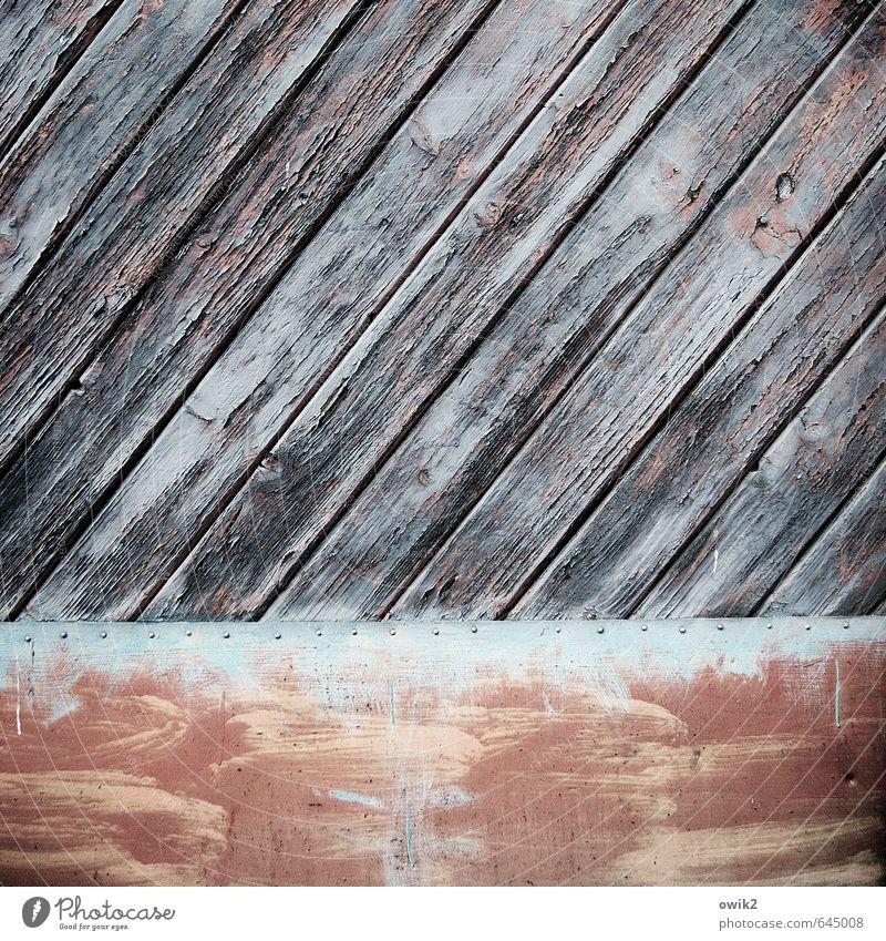 Niet- und nagelfest Tor Holz Metall alt trist trocken Farbe Zufriedenheit gleich Schutz Vergänglichkeit diagonal Maserung Holzbrett Neigung Blech Niete