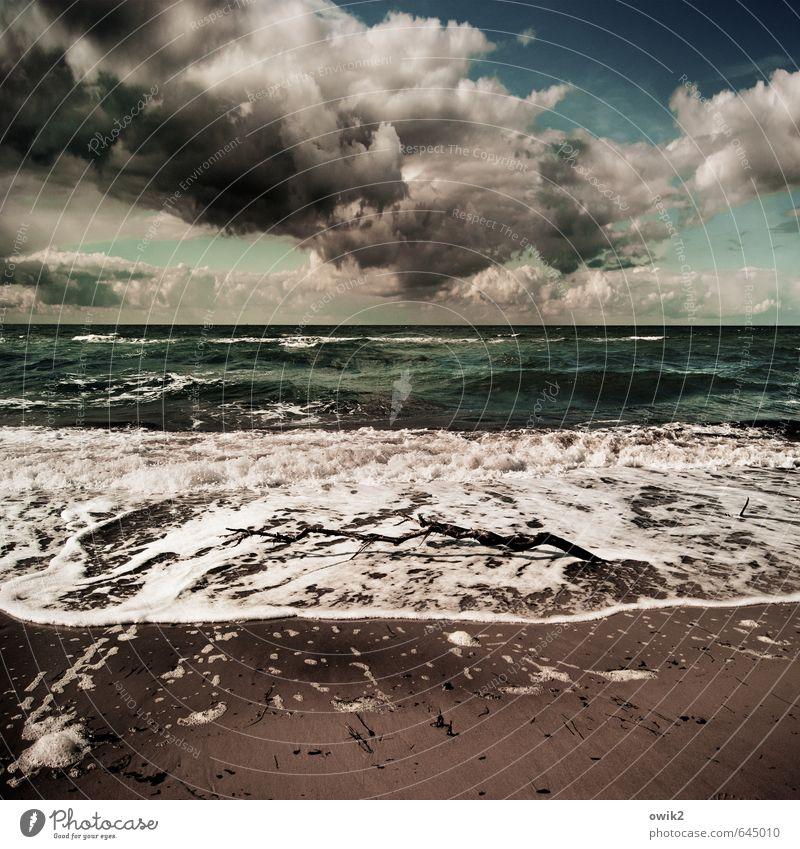Schaumbad Umwelt Natur Landschaft Urelemente Wasser Himmel Wolken Gewitterwolken Horizont Klima Wetter Schönes Wetter Wind Wellen Küste Strand Ostsee Meer Sand