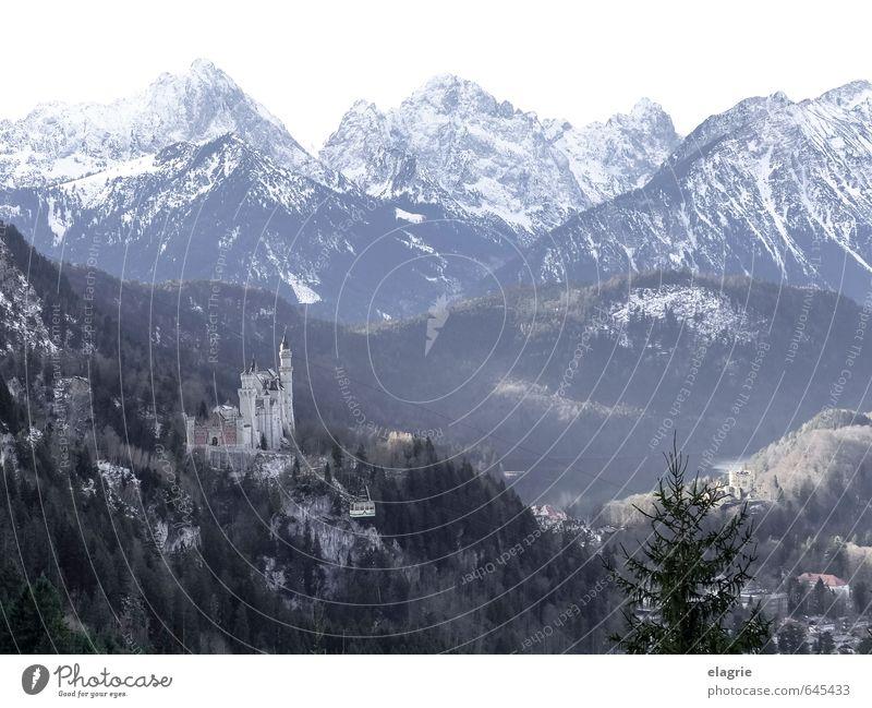 Schloss Neuschwanstein in den Alpen Natur Ferien & Urlaub & Reisen blau grün Erholung Landschaft Winter Berge u. Gebirge grau Felsen träumen Idylle Tourismus
